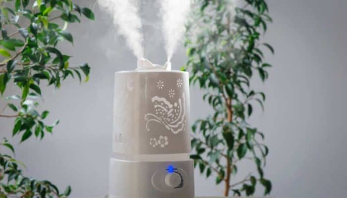 Best Air Humidifiers