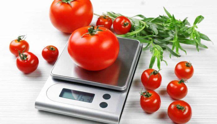 best digtial kitchen scales