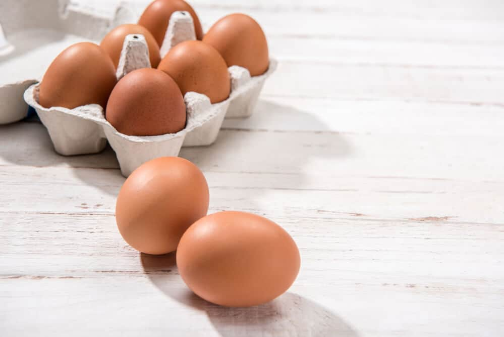 best egg cookers australia