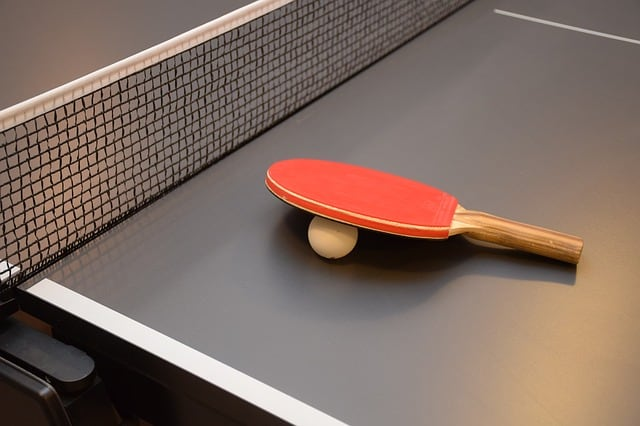 best outdoor table tennis tables