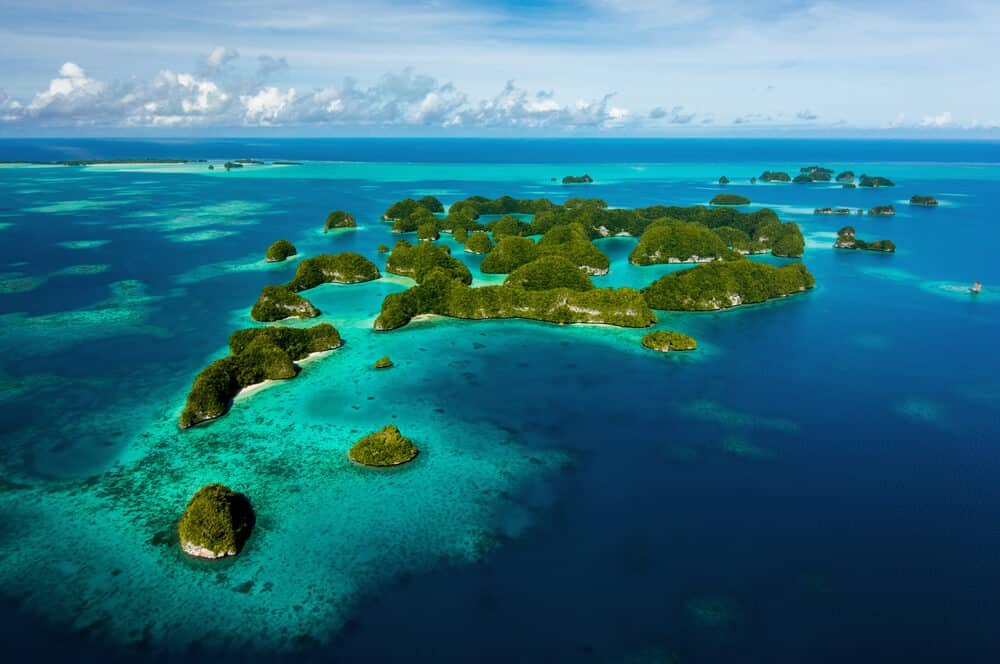 things to do in palau