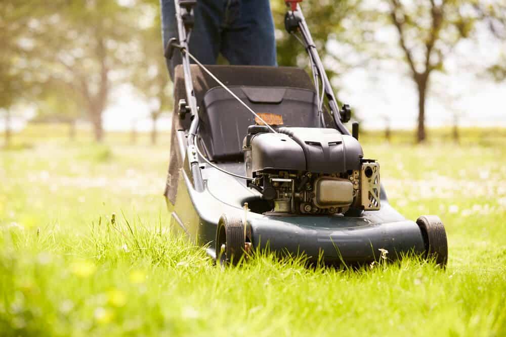 best petrol lawn mowers