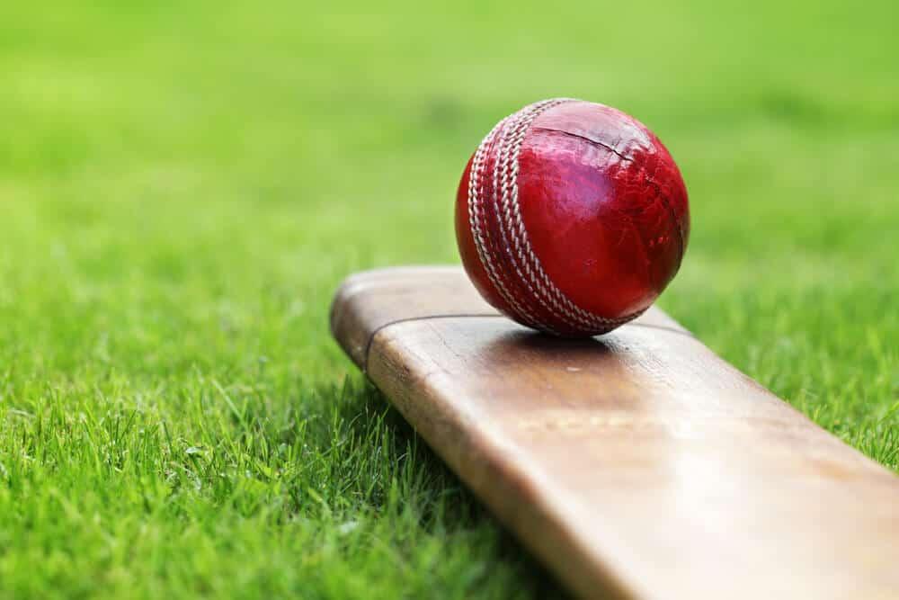 best cricket gift ideas australia